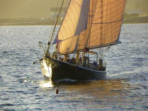 ALERT Sailing